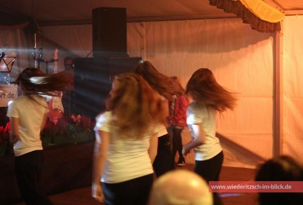 wiederitzsch-herbstfest-2014-dance-company-leipzig-IMG_0885