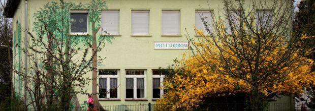 Regenwaldmuseum Phyllodrom e.V. erhält 2. Preis des Familienfreundlichkeitspreis