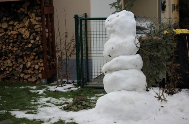 Armer Schneemann