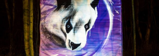Panda Graffiti in Wiederitzsch