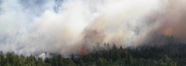 Brandgeruch in Wiederitzsch und Leipziger Norden